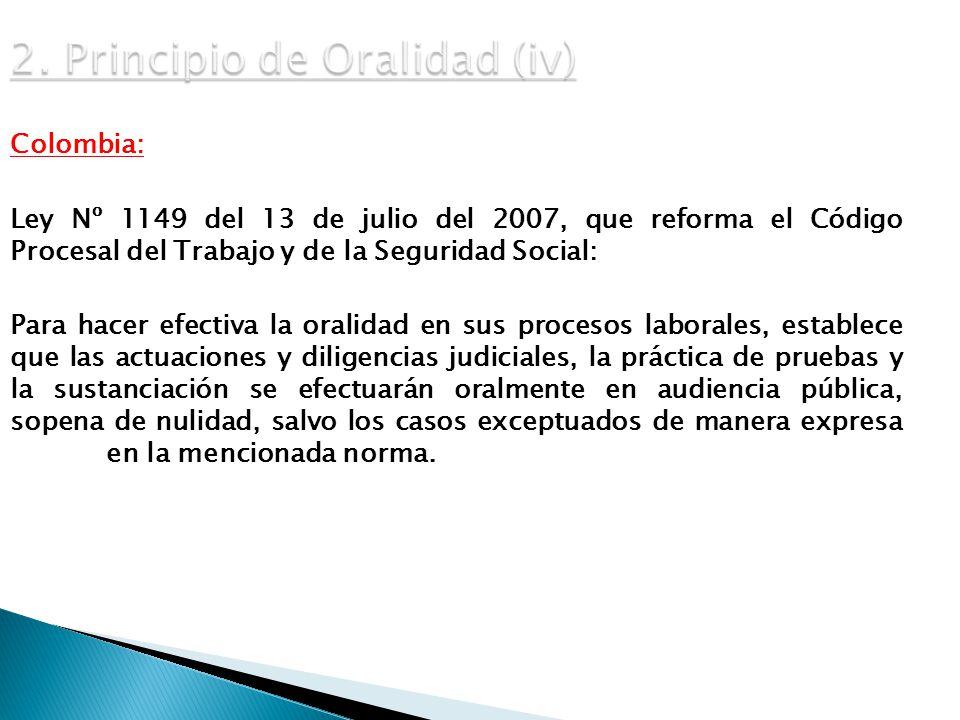 2. Principio de Oralidad (iv)
