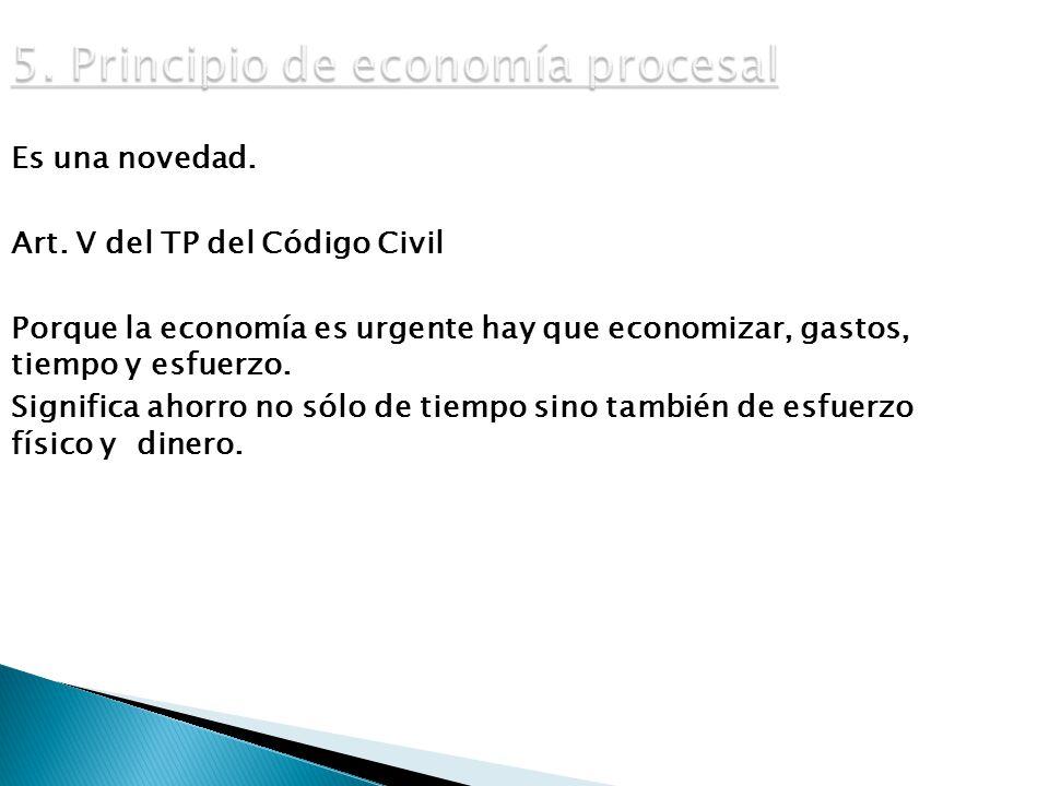5. Principio de economía procesal