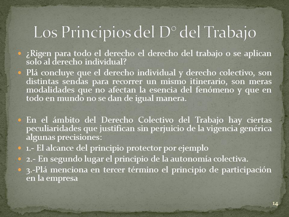 Los Principios del D° del Trabajo