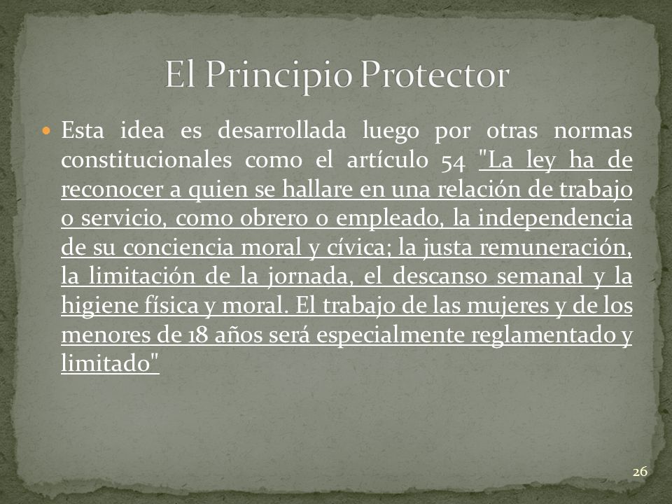 El Principio Protector