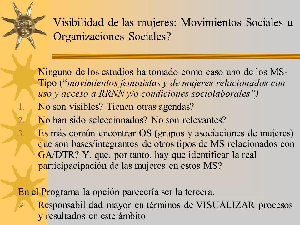 Visibilidad de las mujeres: Movimientos Sociales u Organizaciones Sociales