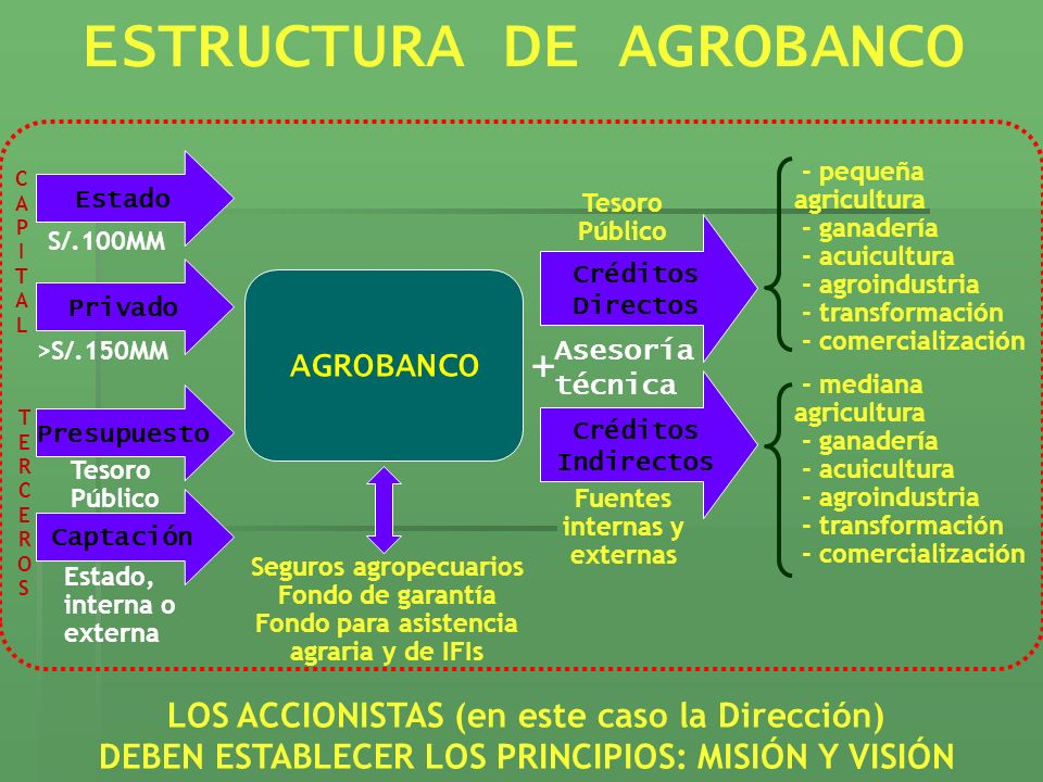 ESTRUCTURA DE AGROBANCO