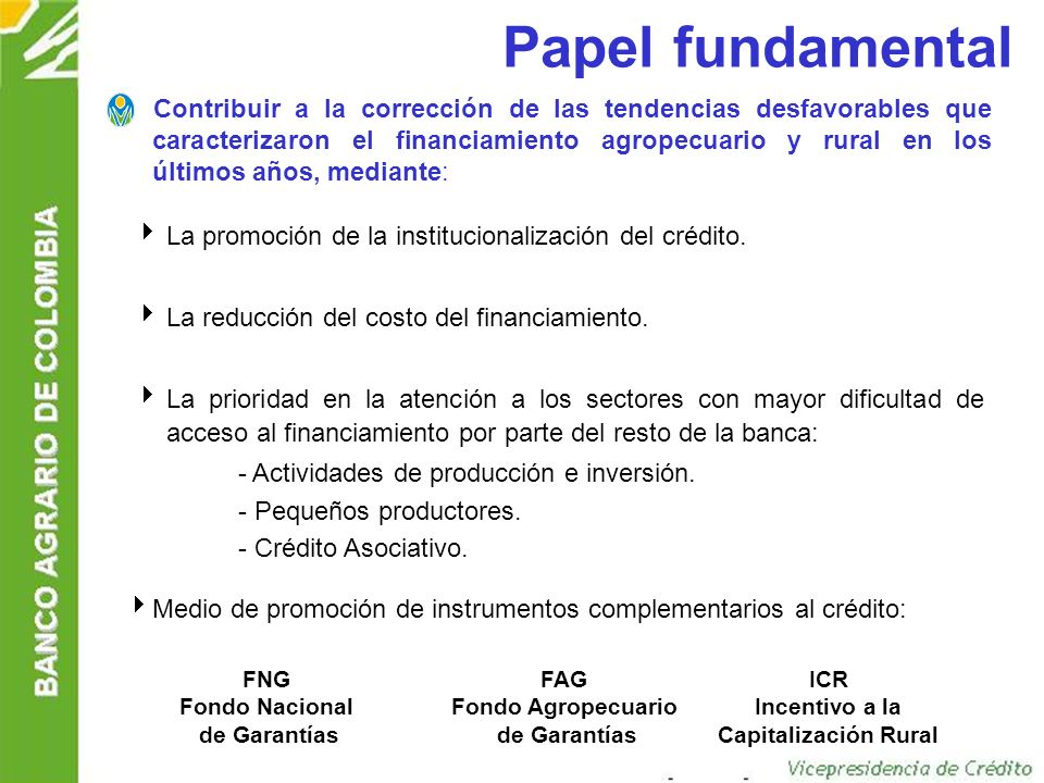 Papel fundamental
