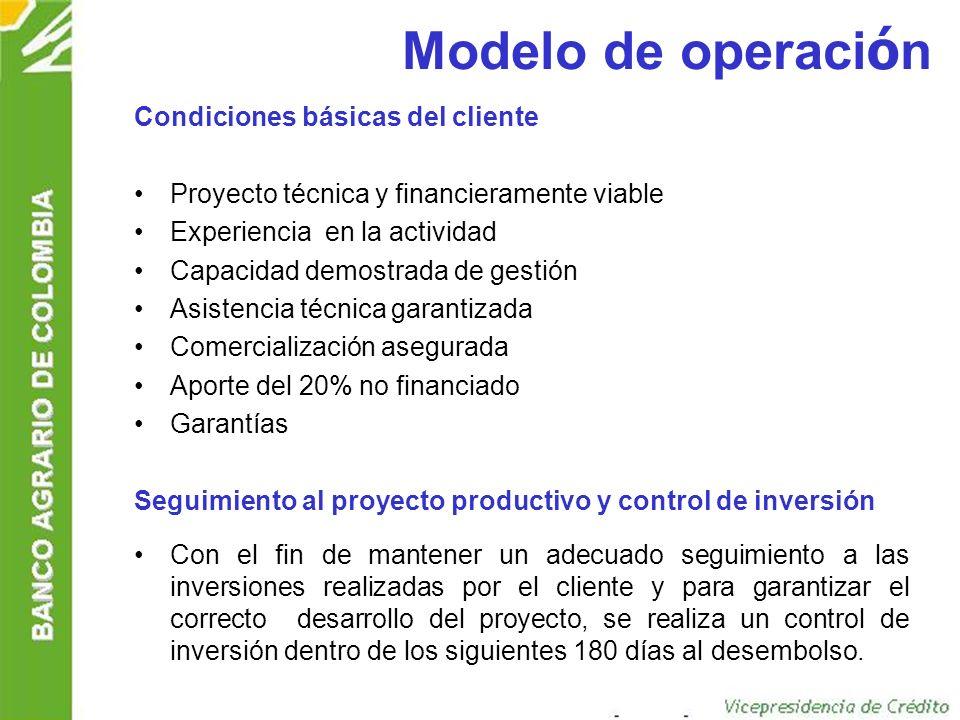 Modelo de operación Condiciones básicas del cliente