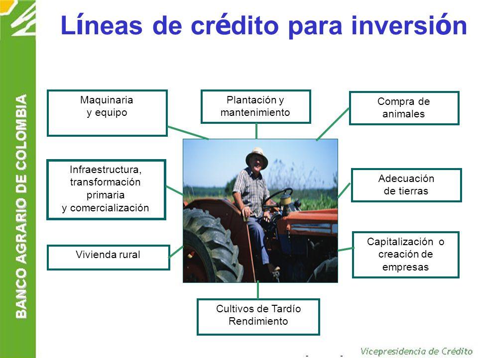 Líneas de crédito para inversión