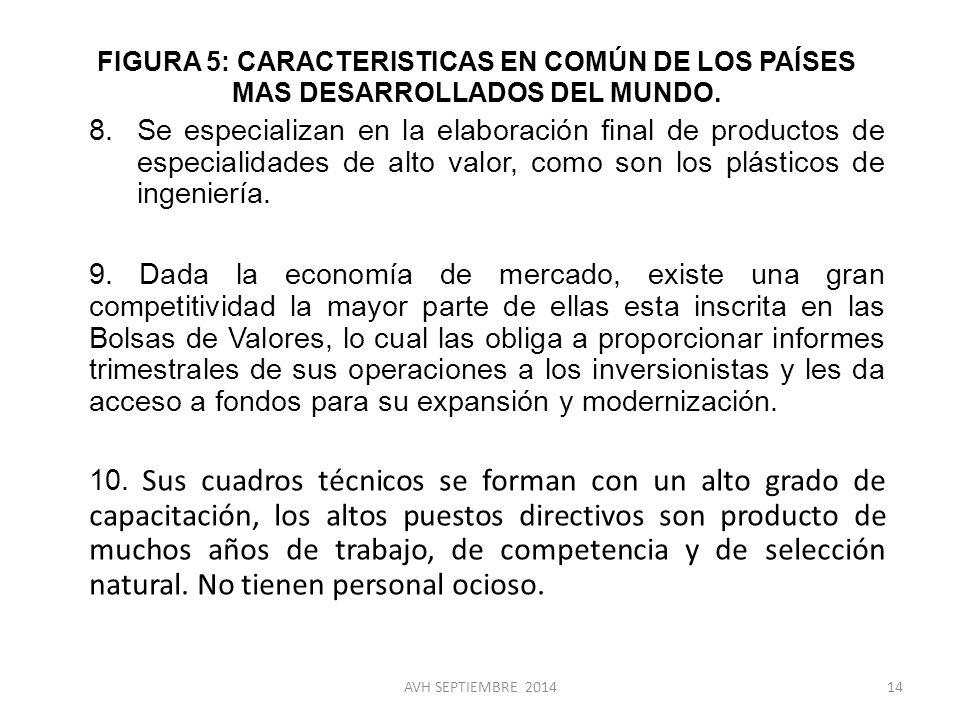 FIGURA 5: CARACTERISTICAS EN COMÚN DE LOS PAÍSES MAS DESARROLLADOS DEL MUNDO.
