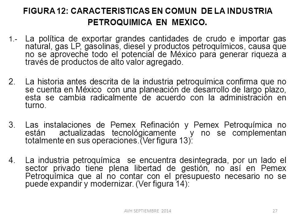 FIGURA 12: CARACTERISTICAS EN COMUN DE LA INDUSTRIA PETROQUIMICA EN MEXICO.