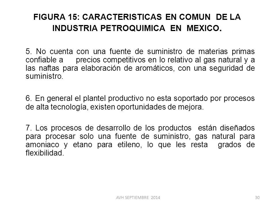 FIGURA 15: CARACTERISTICAS EN COMUN DE LA INDUSTRIA PETROQUIMICA EN MEXICO.