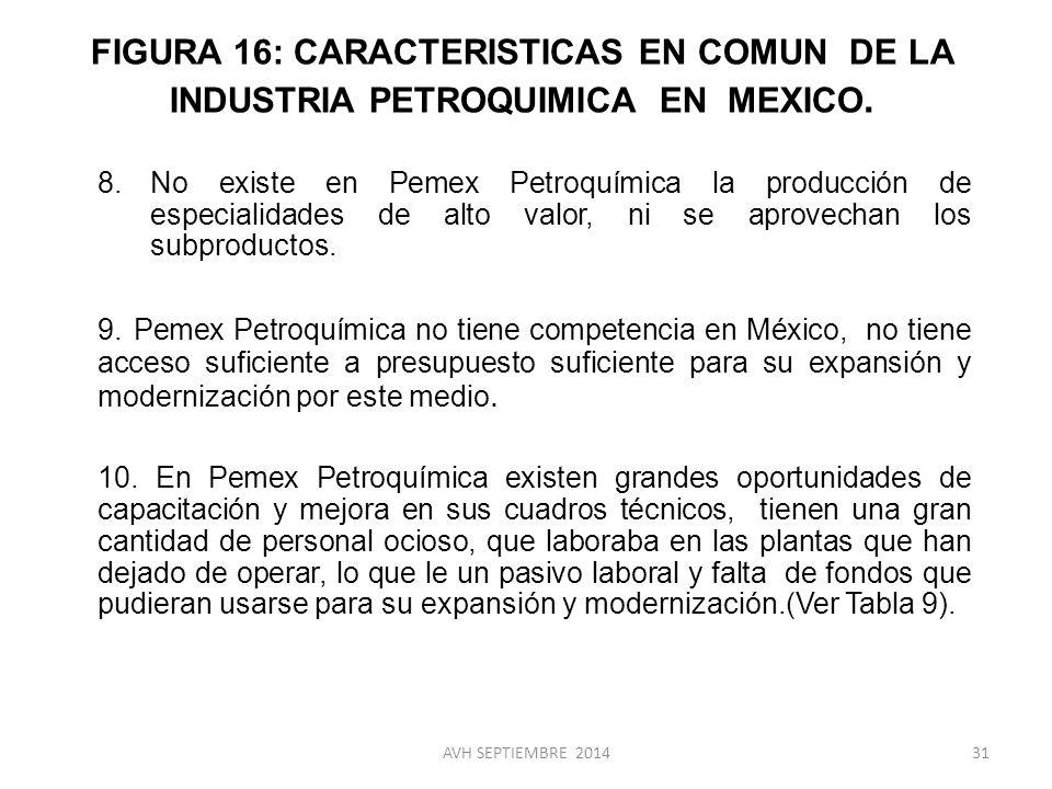 FIGURA 16: CARACTERISTICAS EN COMUN DE LA INDUSTRIA PETROQUIMICA EN MEXICO.