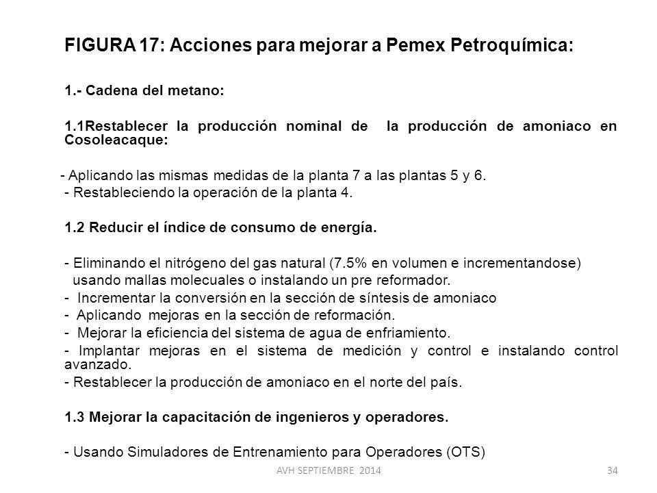 FIGURA 17: Acciones para mejorar a Pemex Petroquímica: