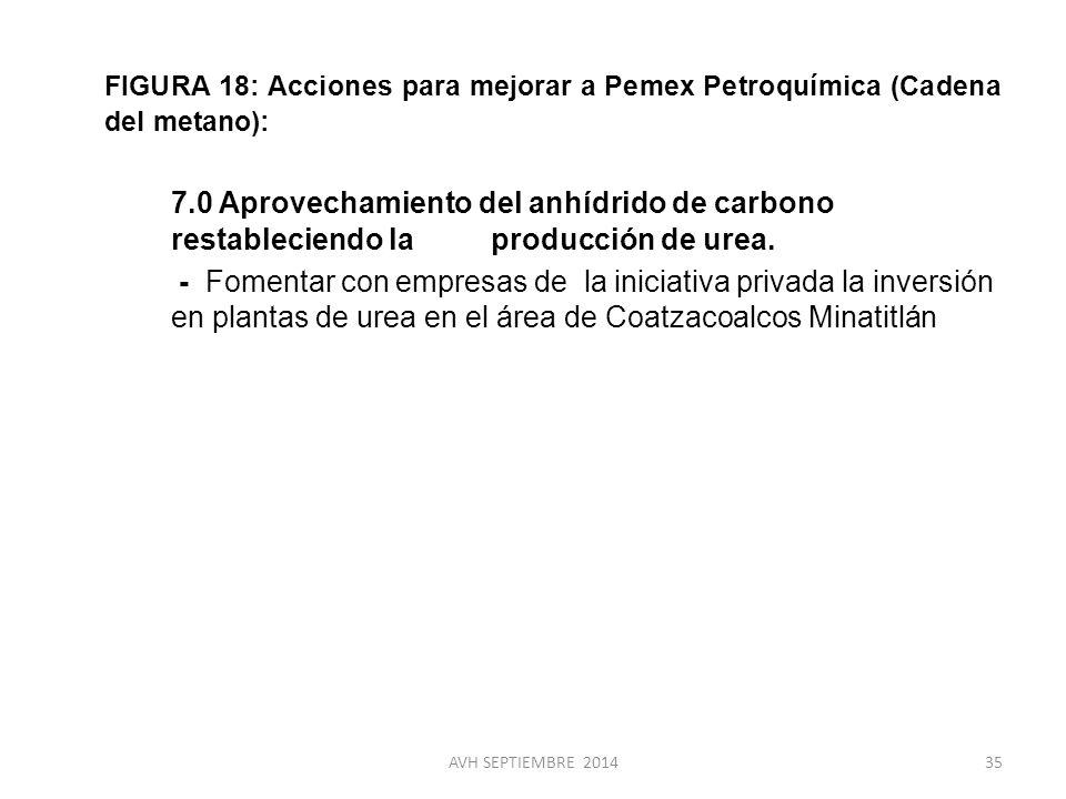 FIGURA 18: Acciones para mejorar a Pemex Petroquímica (Cadena del metano):