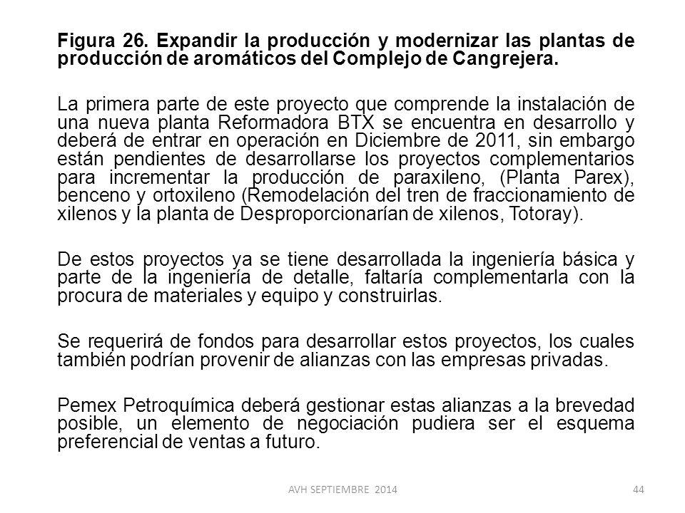 Figura 26. Expandir la producción y modernizar las plantas de producción de aromáticos del Complejo de Cangrejera. La primera parte de este proyecto que comprende la instalación de una nueva planta Reformadora BTX se encuentra en desarrollo y deberá de entrar en operación en Diciembre de 2011, sin embargo están pendientes de desarrollarse los proyectos complementarios para incrementar la producción de paraxileno, (Planta Parex), benceno y ortoxileno (Remodelación del tren de fraccionamiento de xilenos y la planta de Desproporcionarían de xilenos, Totoray). De estos proyectos ya se tiene desarrollada la ingeniería básica y parte de la ingeniería de detalle, faltaría complementarla con la procura de materiales y equipo y construirlas. Se requerirá de fondos para desarrollar estos proyectos, los cuales también podrían provenir de alianzas con las empresas privadas. Pemex Petroquímica deberá gestionar estas alianzas a la brevedad posible, un elemento de negociación pudiera ser el esquema preferencial de ventas a futuro.