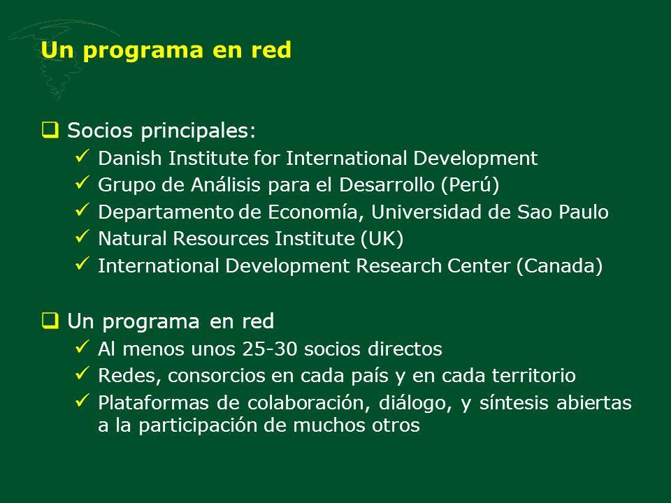 Un programa en red Socios principales: Un programa en red