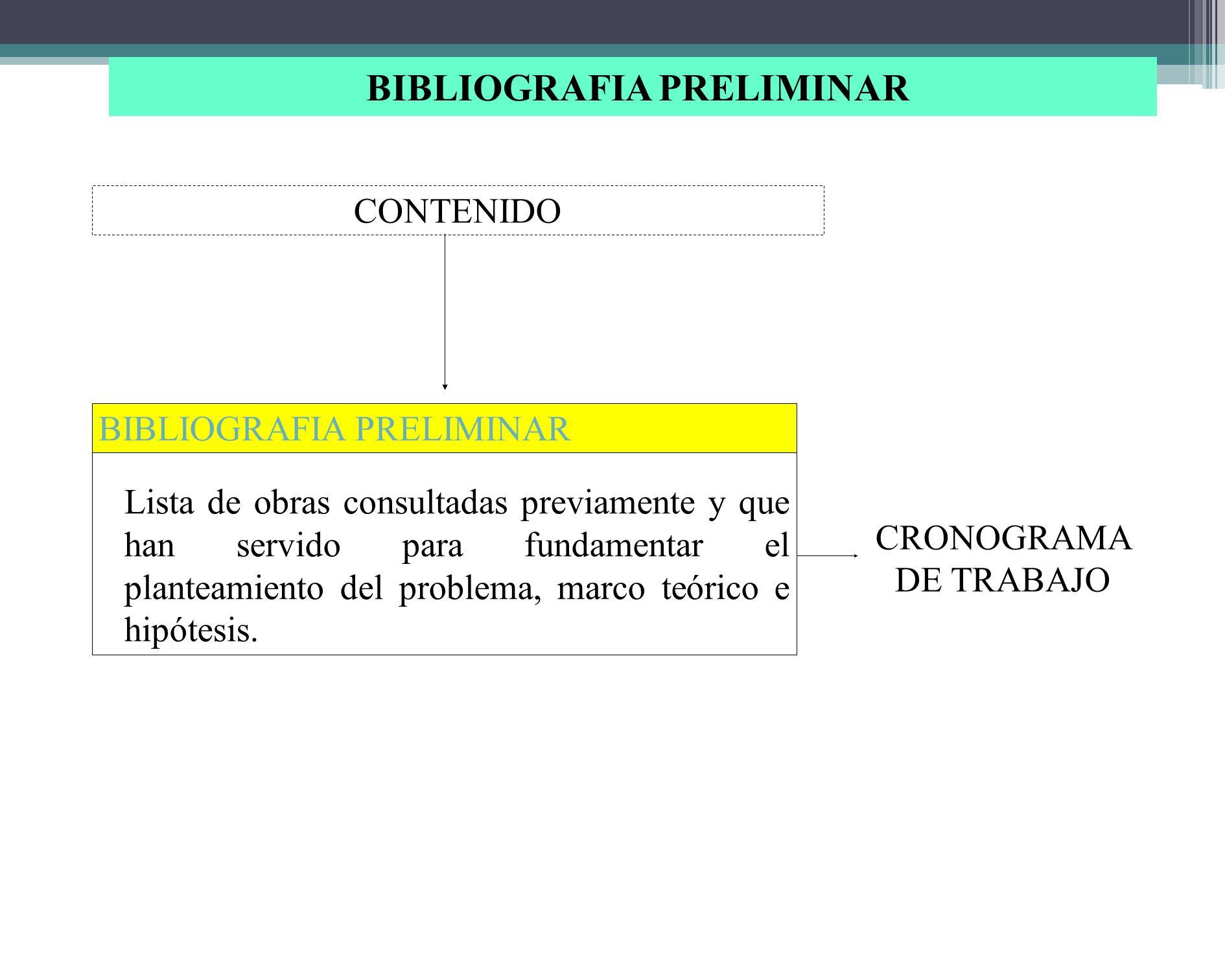 BIBLIOGRAFIA PRELIMINAR