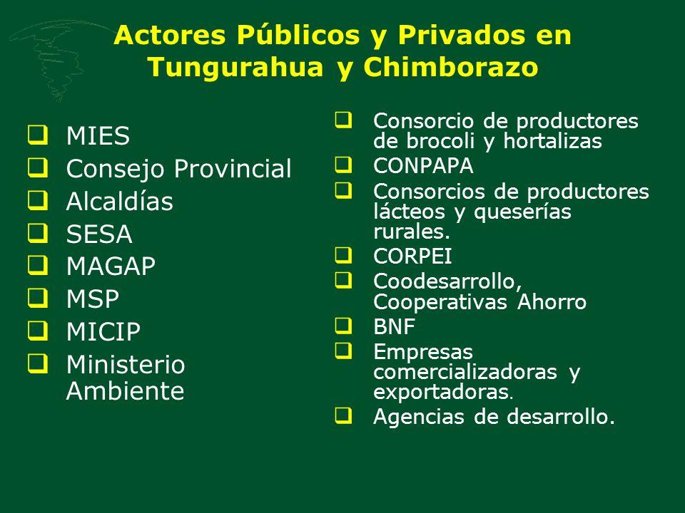 Actores Públicos y Privados en Tungurahua y Chimborazo