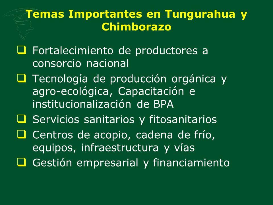 Temas Importantes en Tungurahua y Chimborazo