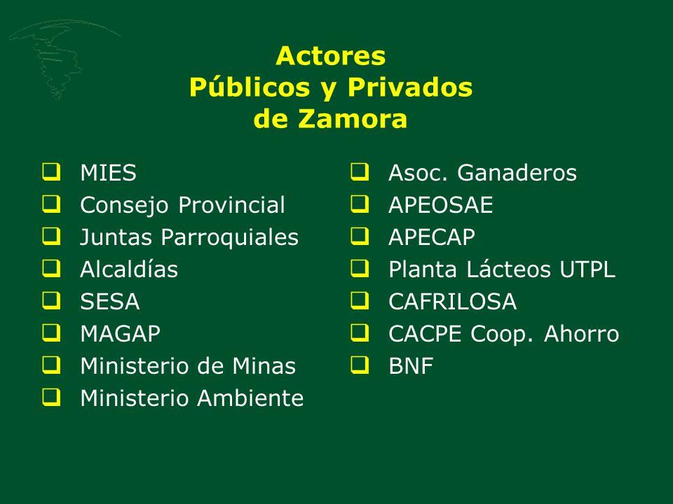 Actores Públicos y Privados de Zamora