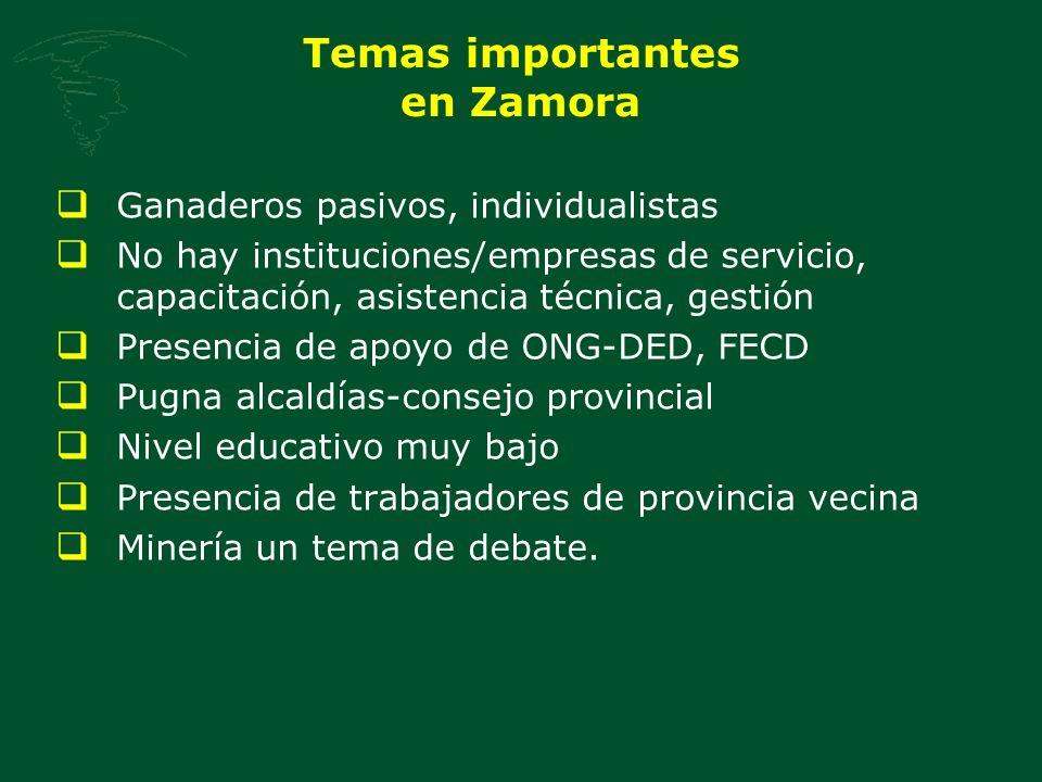 Temas importantes en Zamora