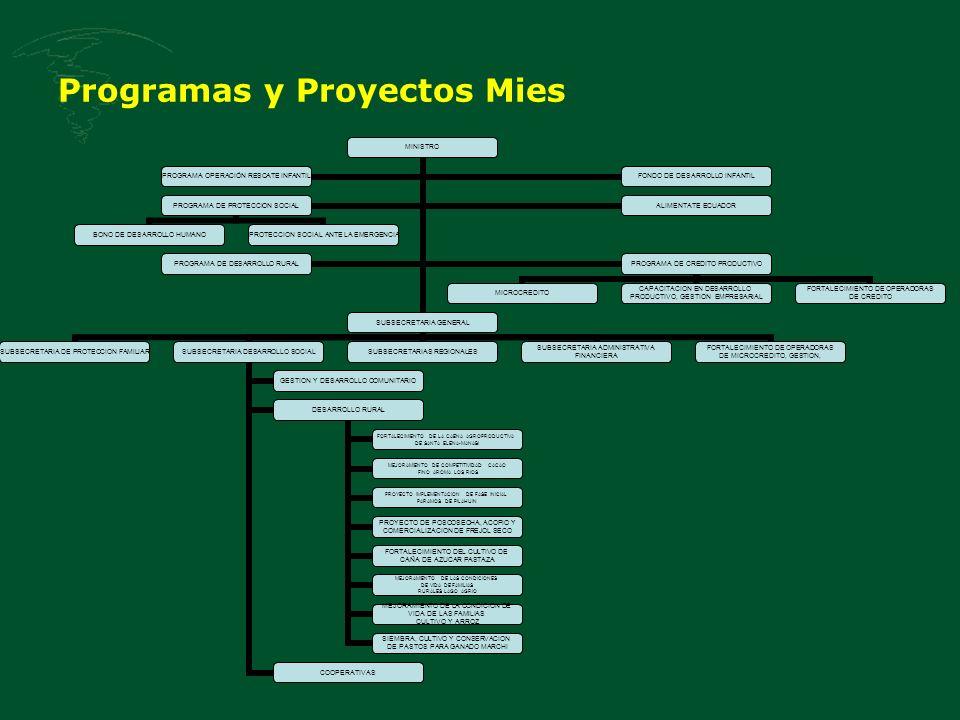 Programas y Proyectos Mies