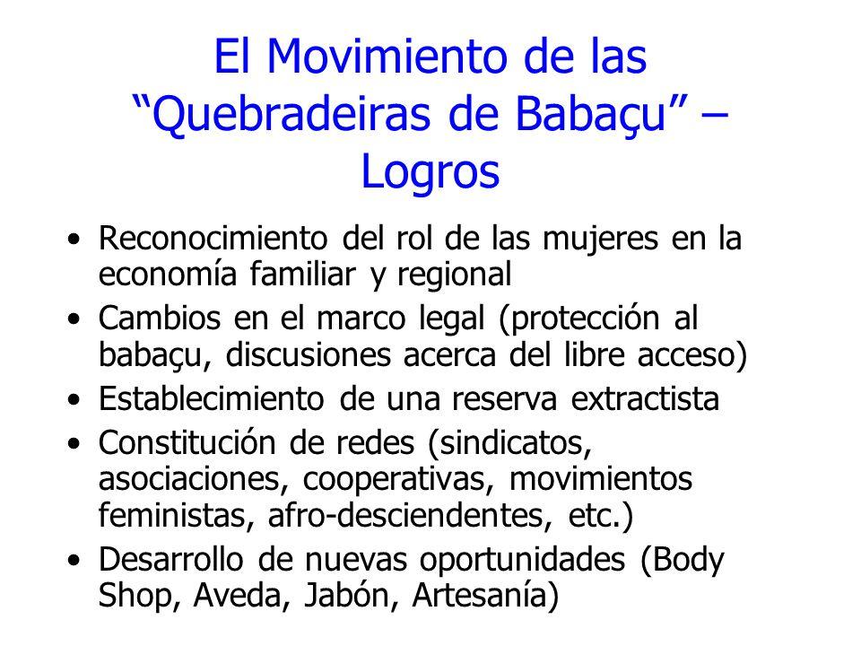 El Movimiento de las Quebradeiras de Babaçu – Logros