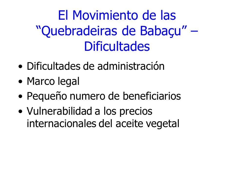 El Movimiento de las Quebradeiras de Babaçu – Dificultades