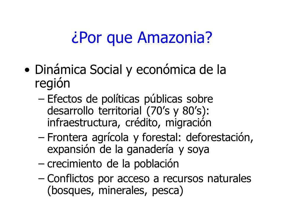 ¿Por que Amazonia Dinámica Social y económica de la región