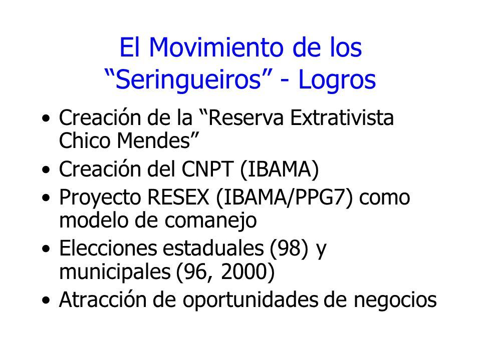 El Movimiento de los Seringueiros - Logros