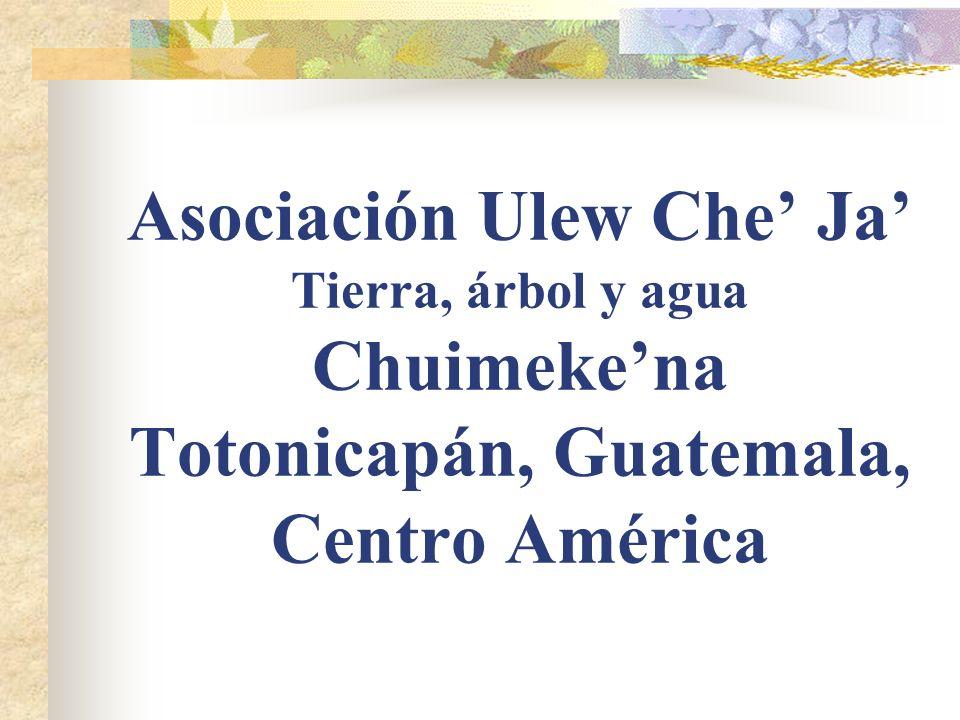 Asociación Ulew Che' Ja' Tierra, árbol y agua Chuimeke'na Totonicapán, Guatemala, Centro América