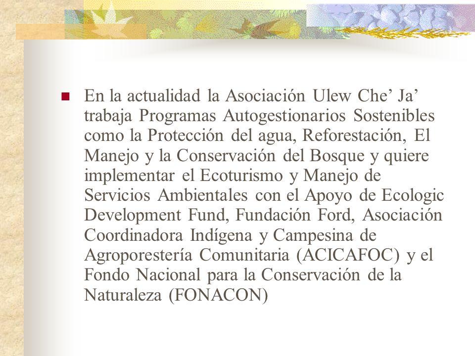 En la actualidad la Asociación Ulew Che' Ja' trabaja Programas Autogestionarios Sostenibles como la Protección del agua, Reforestación, El Manejo y la Conservación del Bosque y quiere implementar el Ecoturismo y Manejo de Servicios Ambientales con el Apoyo de Ecologic Development Fund, Fundación Ford, Asociación Coordinadora Indígena y Campesina de Agroporestería Comunitaria (ACICAFOC) y el Fondo Nacional para la Conservación de la Naturaleza (FONACON)