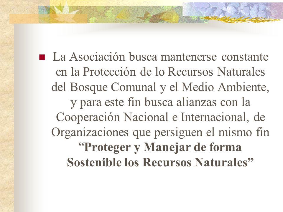 La Asociación busca mantenerse constante en la Protección de lo Recursos Naturales del Bosque Comunal y el Medio Ambiente, y para este fin busca alianzas con la Cooperación Nacional e Internacional, de Organizaciones que persiguen el mismo fin Proteger y Manejar de forma Sostenible los Recursos Naturales
