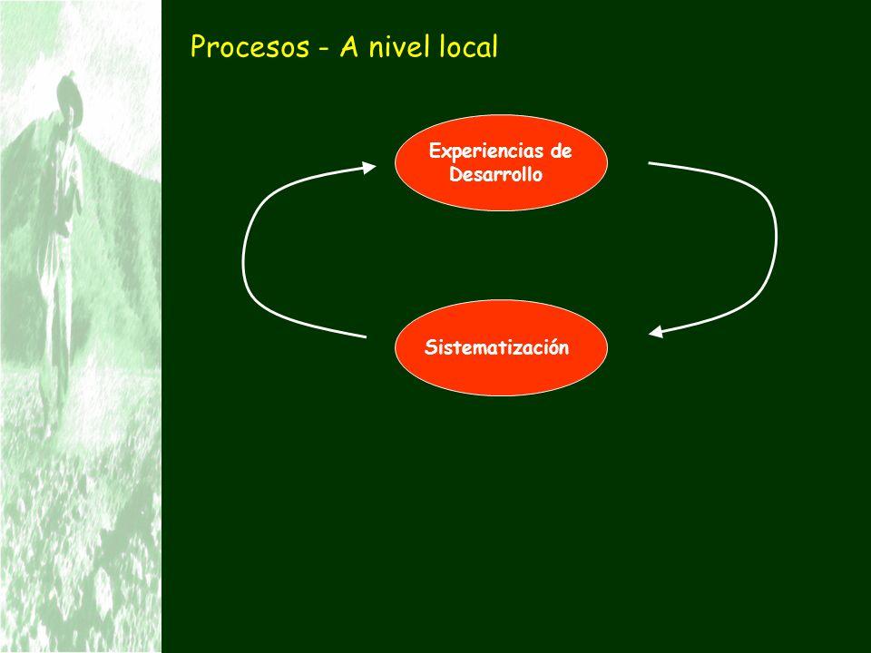 Procesos - A nivel local