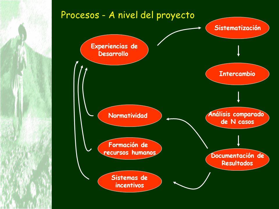 Procesos - A nivel del proyecto