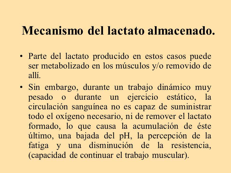 Mecanismo del lactato almacenado.