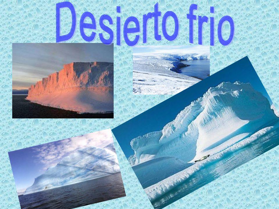 Desierto frio
