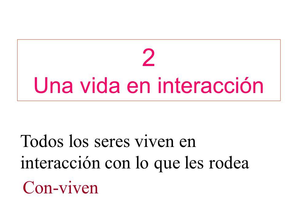 2 Una vida en interacción