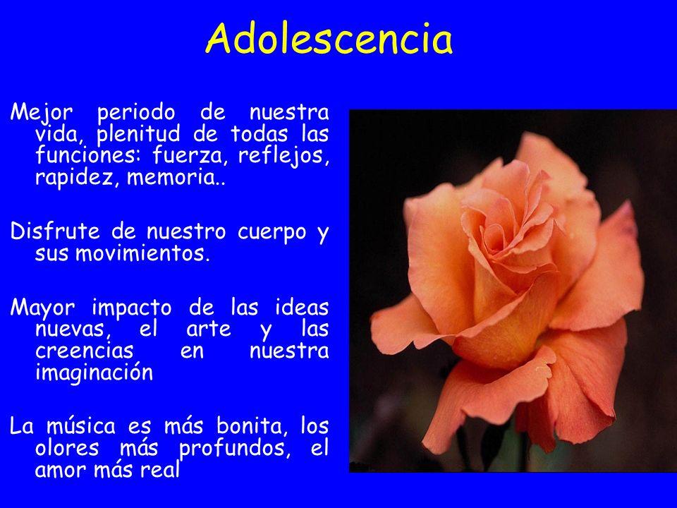 Adolescencia Mejor periodo de nuestra vida, plenitud de todas las funciones: fuerza, reflejos, rapidez, memoria..