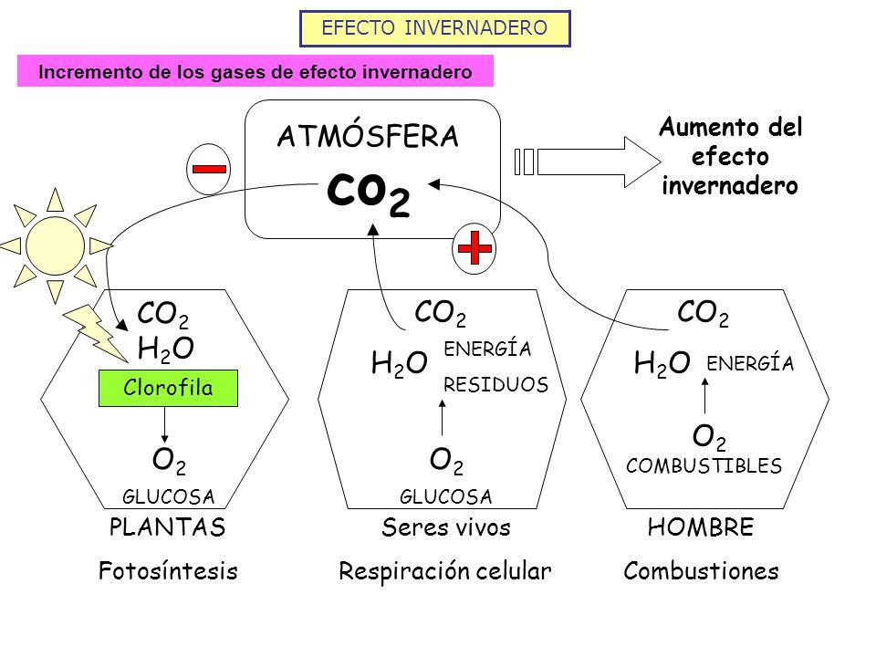 co2 ATMÓSFERA CO2 H2O O2 O2 H2O CO2 O2 H2O CO2
