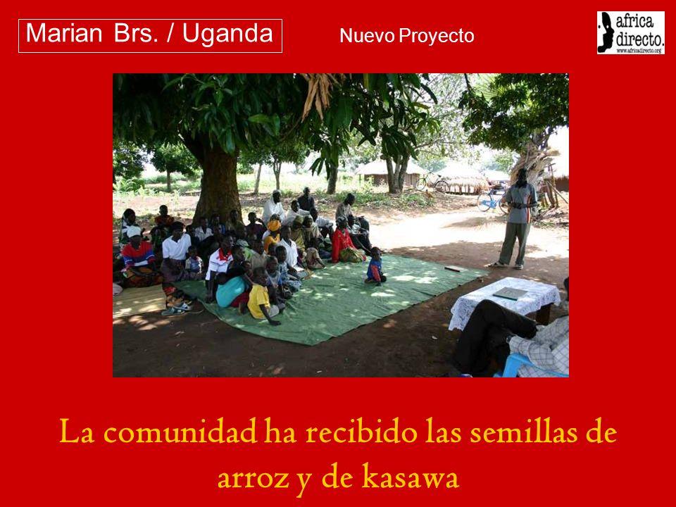 La comunidad ha recibido las semillas de arroz y de kasawa