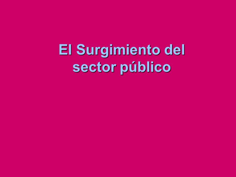 El Surgimiento del sector público
