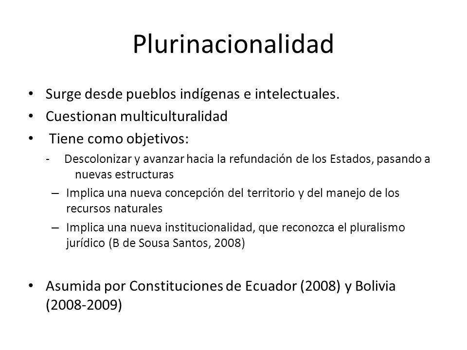 Plurinacionalidad Surge desde pueblos indígenas e intelectuales.