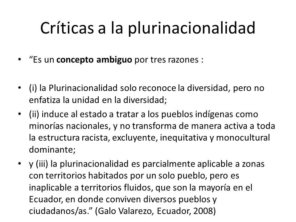 Críticas a la plurinacionalidad