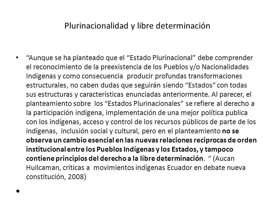 Plurinacionalidad y libre determinación