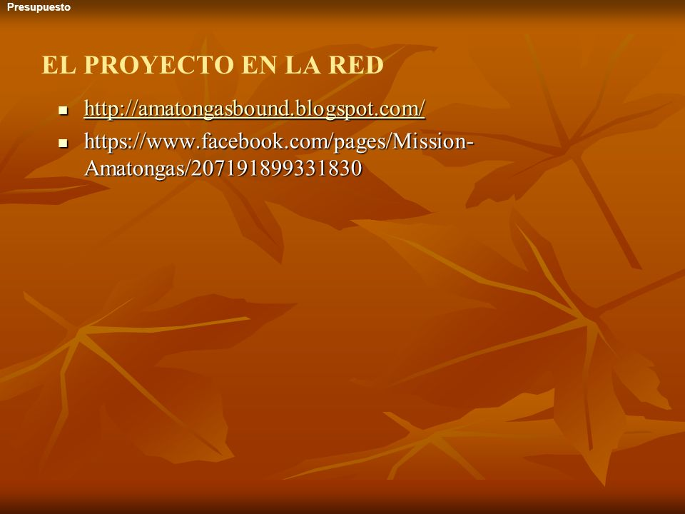 EL PROYECTO EN LA RED http://amatongasbound.blogspot.com/