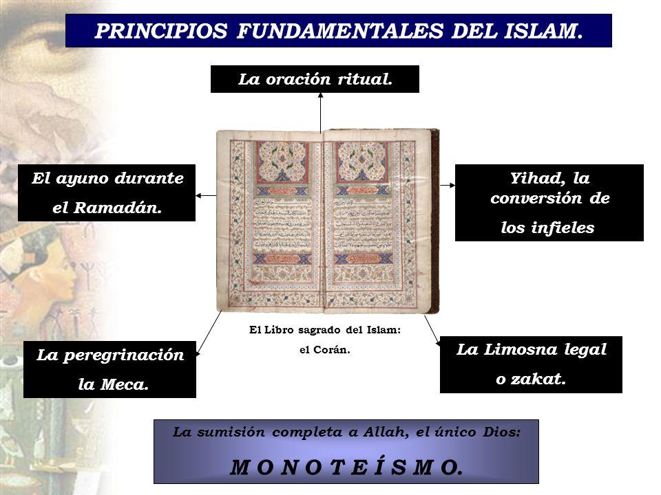 PRINCIPIOS FUNDAMENTALES DEL ISLAM.