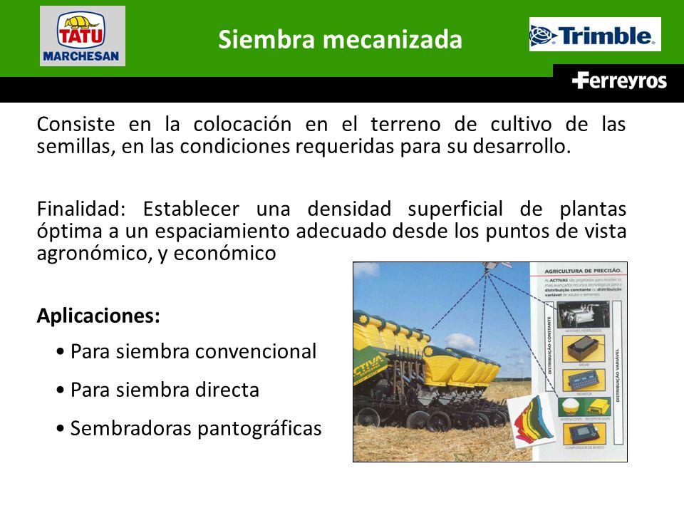 Siembra mecanizada Consiste en la colocación en el terreno de cultivo de las semillas, en las condiciones requeridas para su desarrollo.