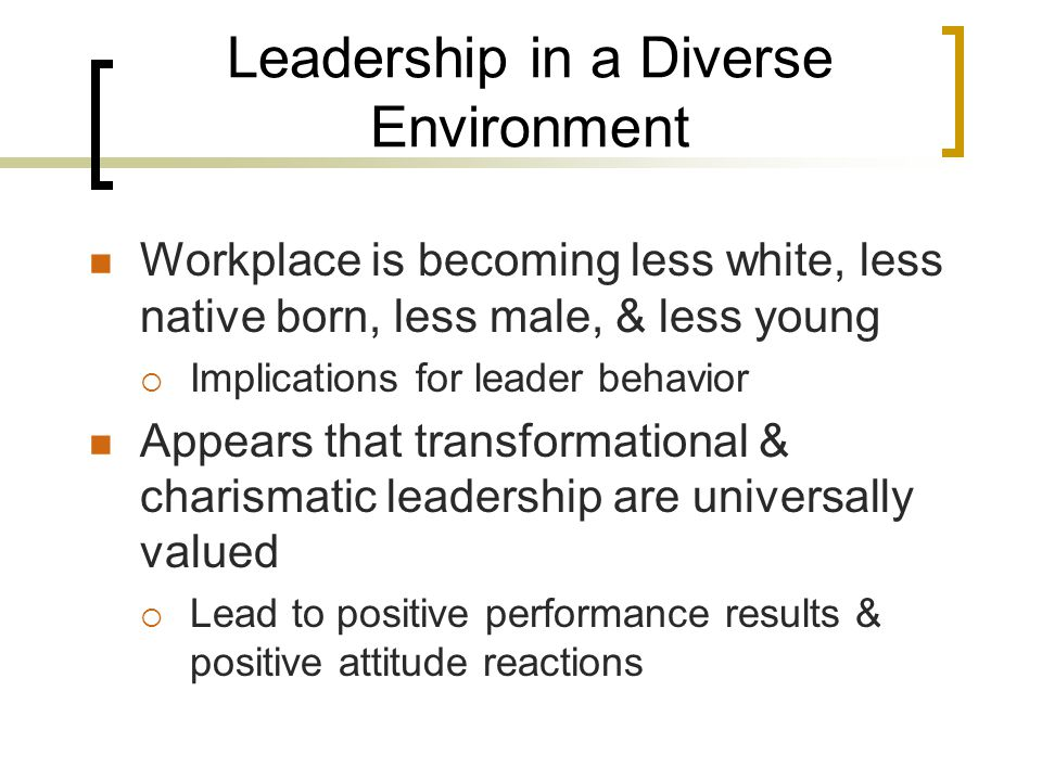 Leadership in a Diverse Environment