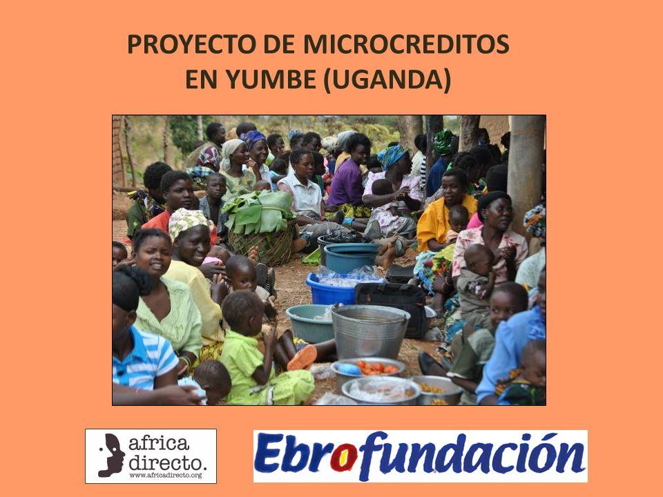 PROYECTO DE MICROCREDITOS