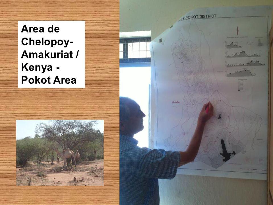 Area de Chelopoy-Amakuriat / Kenya - Pokot Area