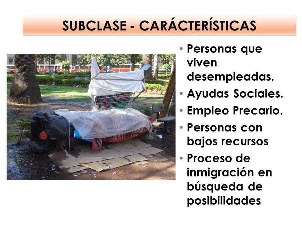 SUBCLASE - CARÁCTERÍSTICAS