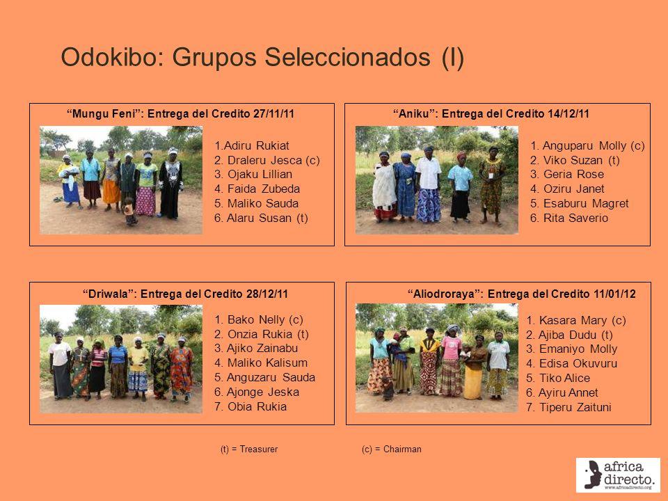 Odokibo: Grupos Seleccionados (I)